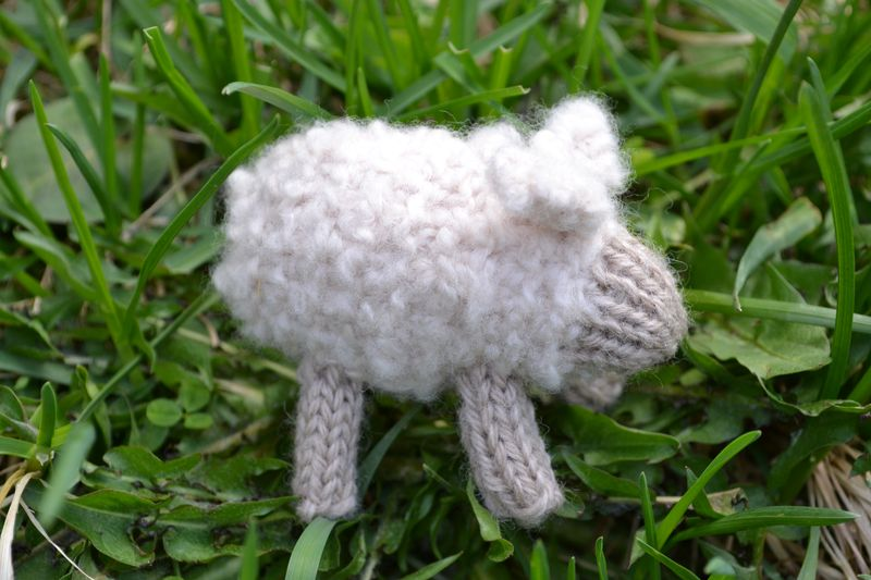 Knitted Farmyard - May 2011 - sheep 2