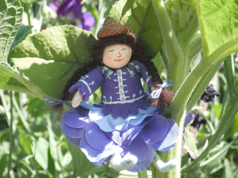 July 25, 2010 - Forget Me Not Flower Fairy