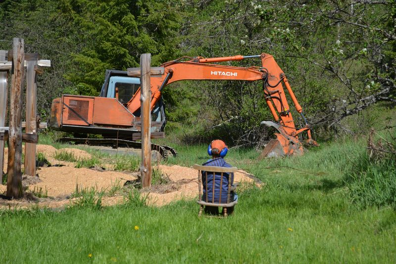 May 2012 - digging the pond 4
