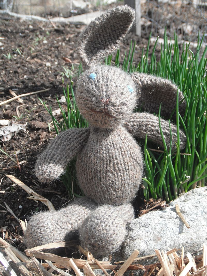 April 2012 - bunnies 1