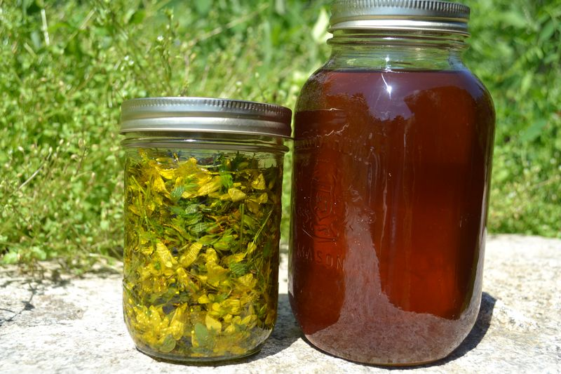 July 22, 2012 - St. John's Wort oil and Oil of Gilead