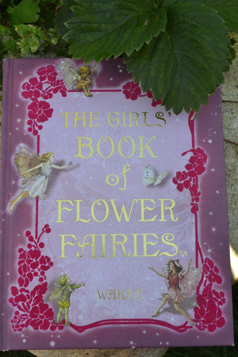 July 2012 - fairy garden 10