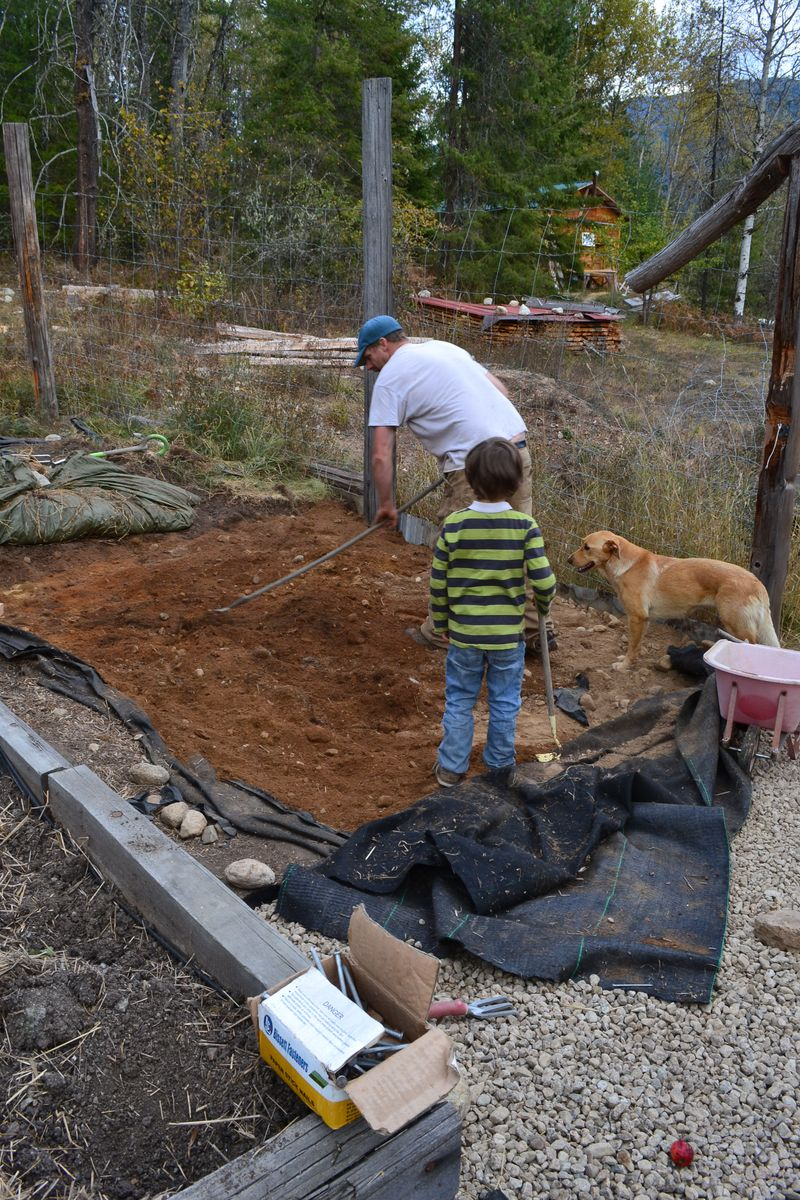 October 2012 - building more beds 3
