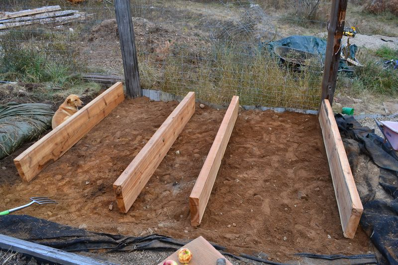 October 2012 - building more beds 5