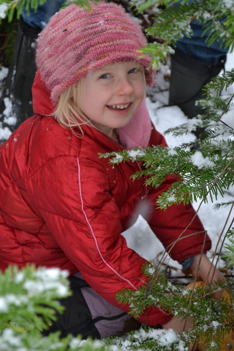 Christmas 2012 - tree 5