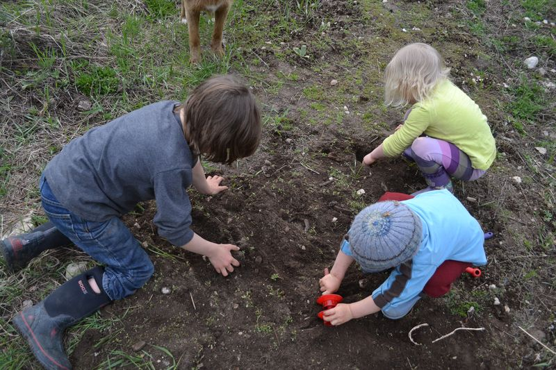 April 2013 - digging for the pigs