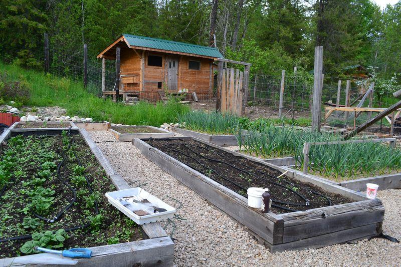 May 21, 2014 - Big Garden 2