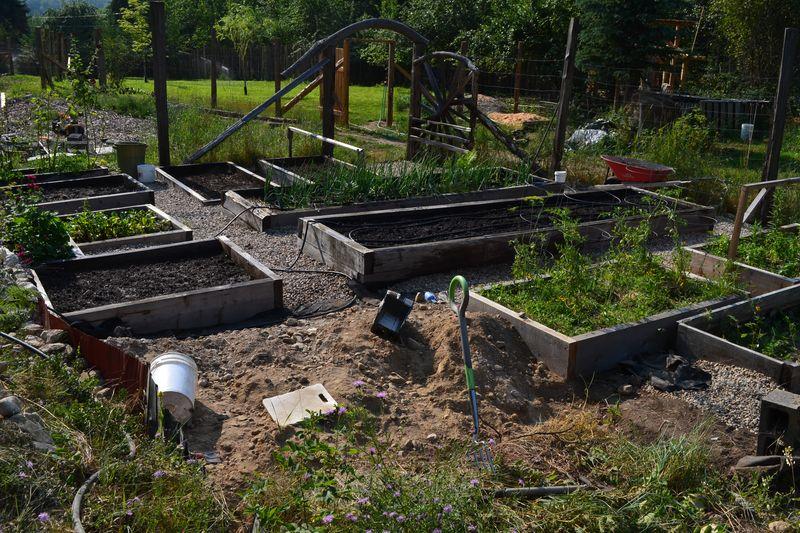 August 7, 2014 - Big Garden 1