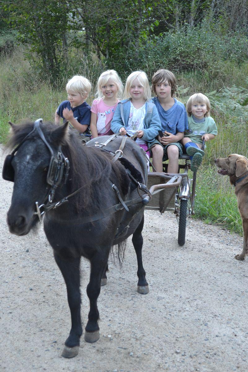 September 2014 - Daisy rides 4