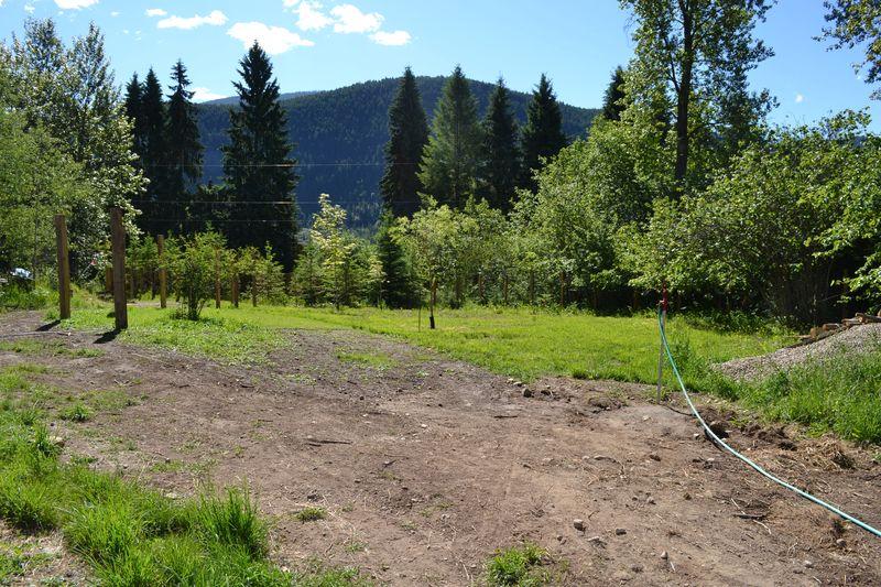 June 11, 2014 - pasture