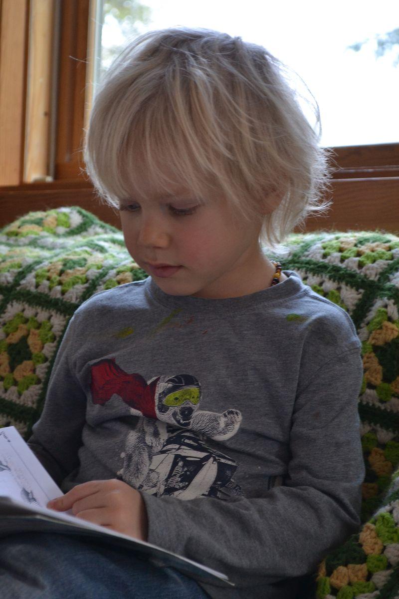 January 2015 - reading boy