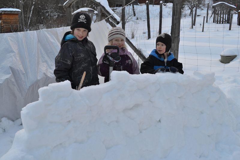 January 2015 - snow fort 2