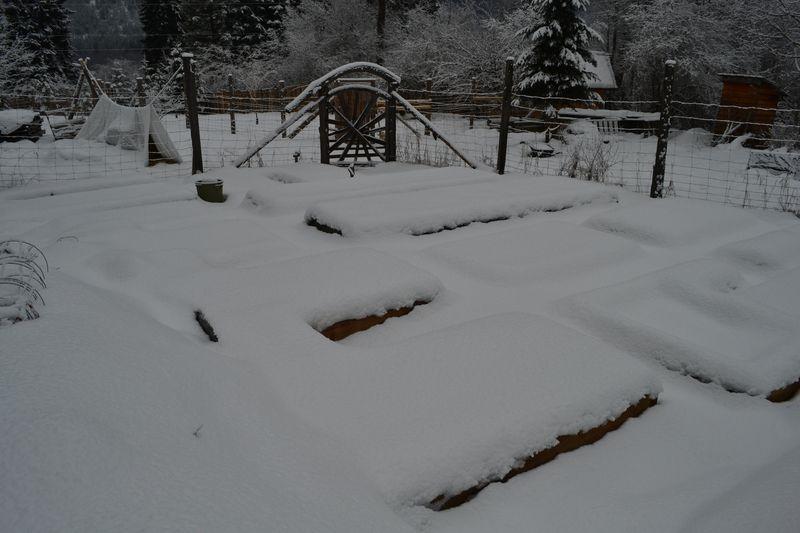 February 2015 - big garden
