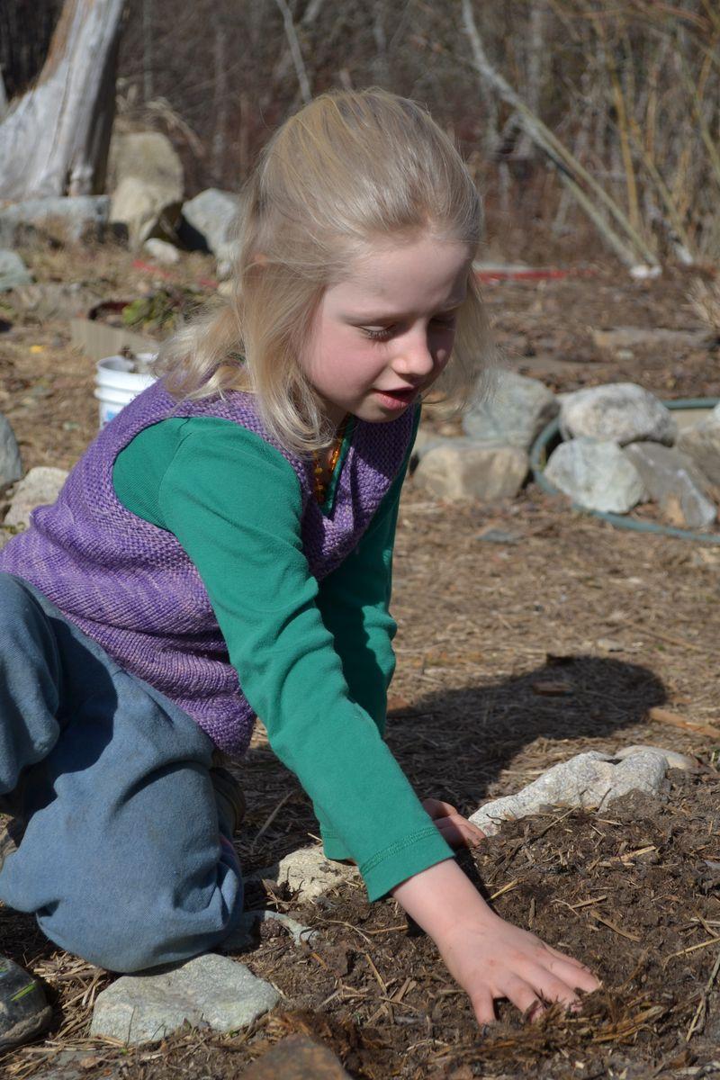 March 2015 - planting catnip