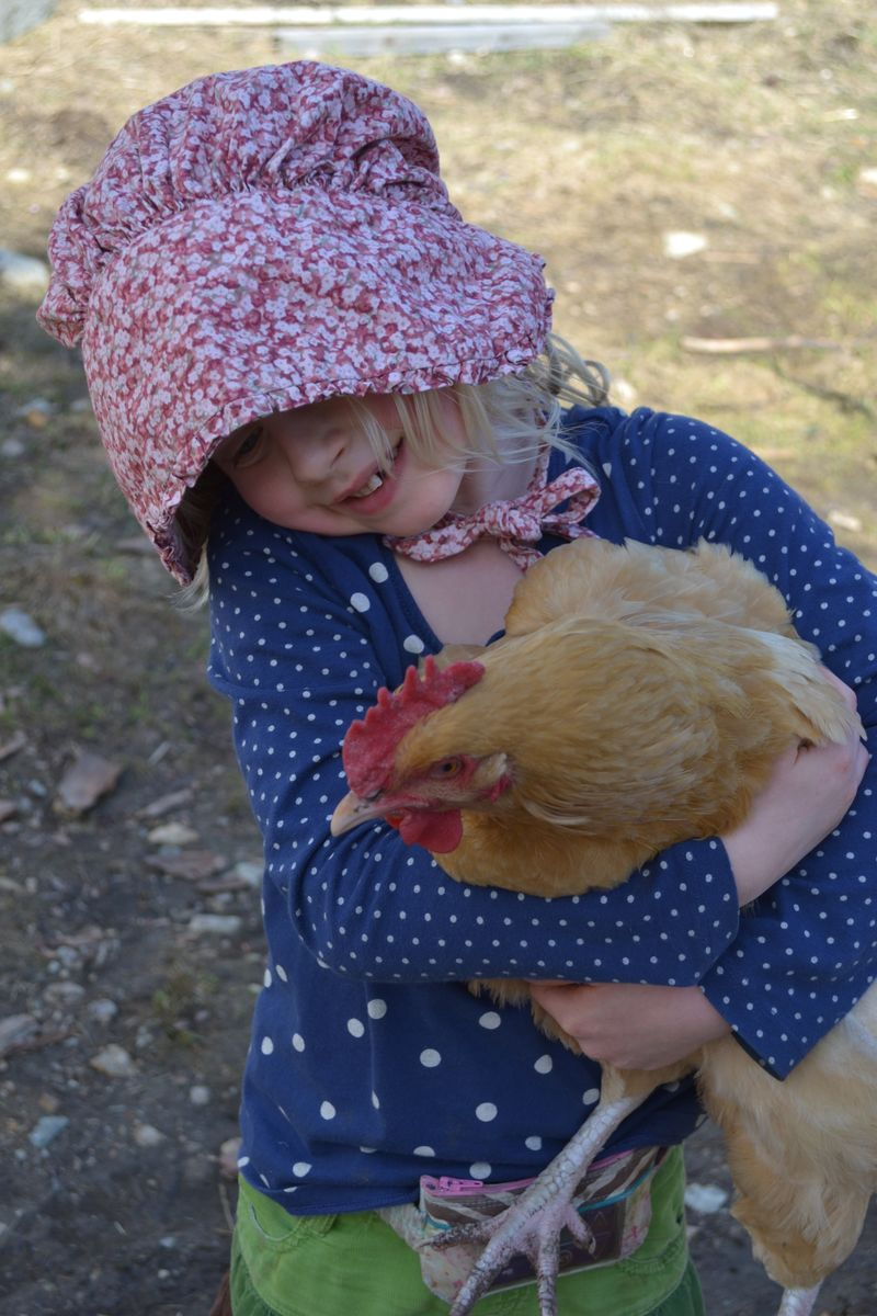 March 2015 - chicken love 2