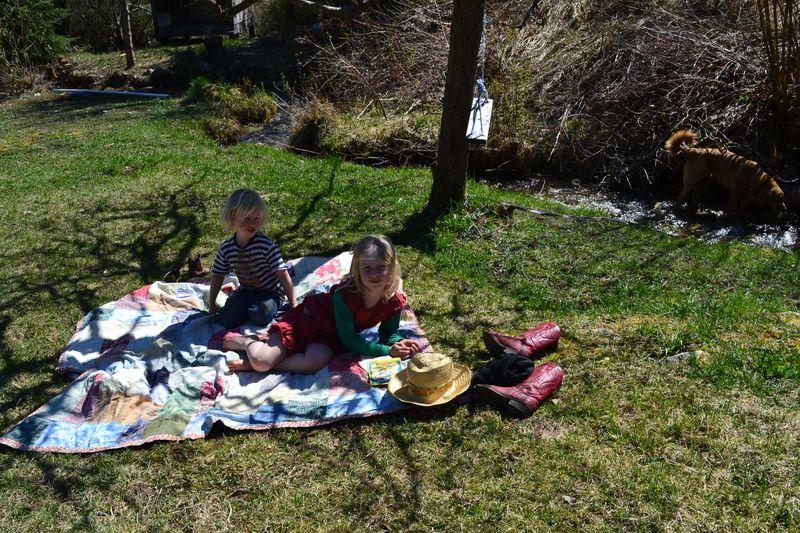 April 2015 - spring picnic