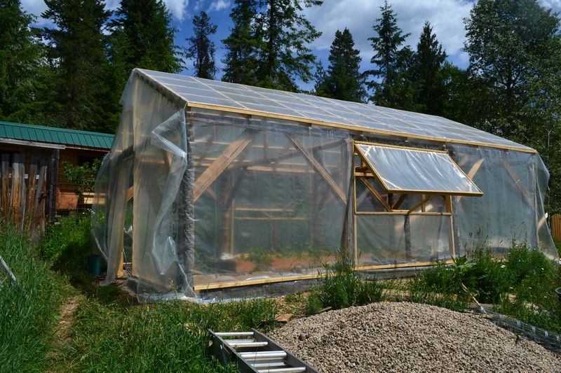 June 16, 2015 - greenhouse 1