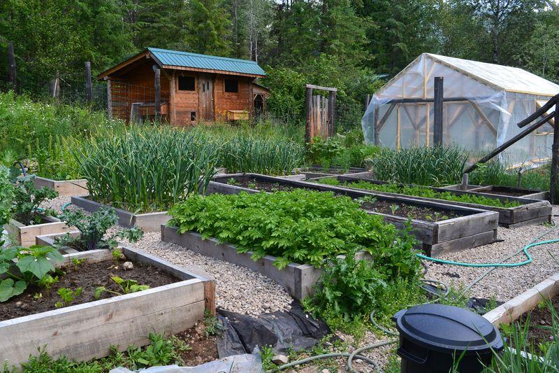 June 16, 2015 - big garden 6