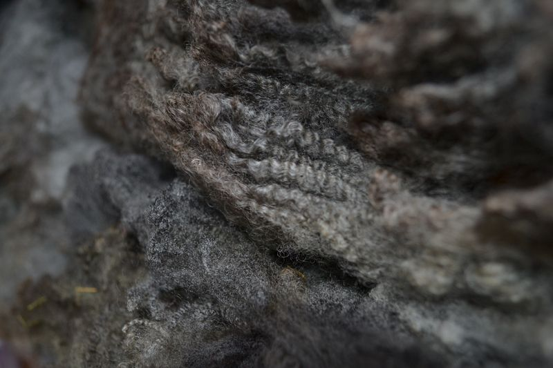 March 2015 - Gotland x BFL purchased 1