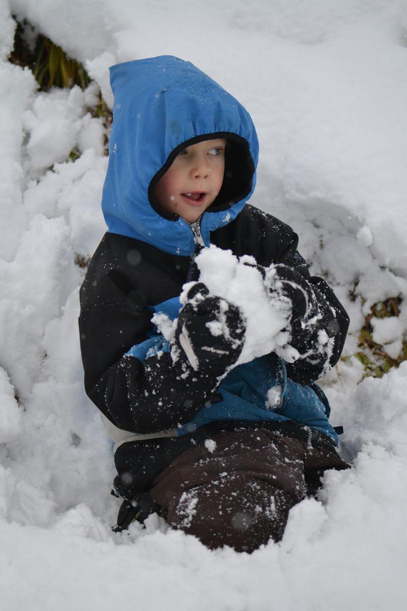 November 2015 - first snowfall 8