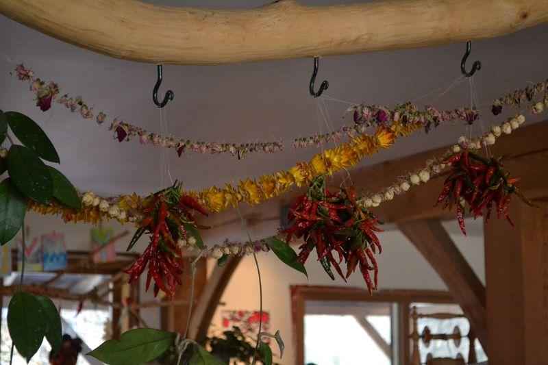 November 2015 - hanging chilis