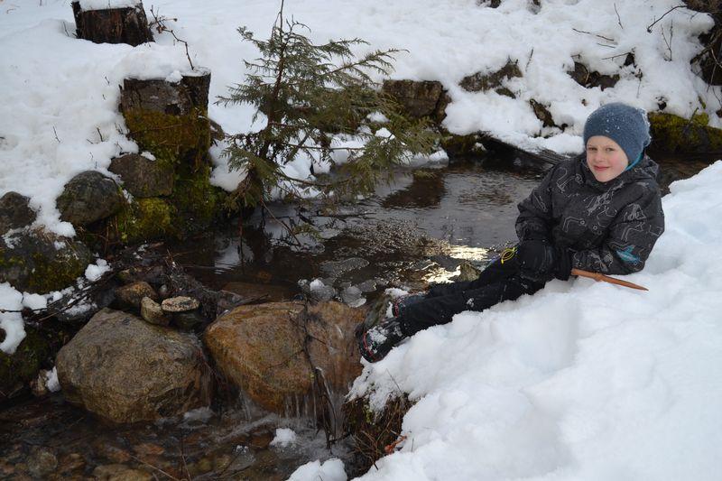 February 2016 - winter creekside 2