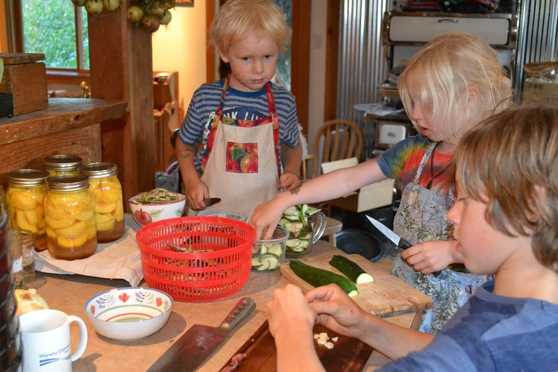 August 2014 - kitchen helpers 1
