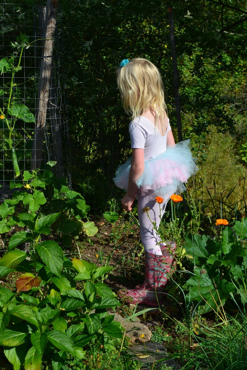 August 2014 - ballerina in the garden