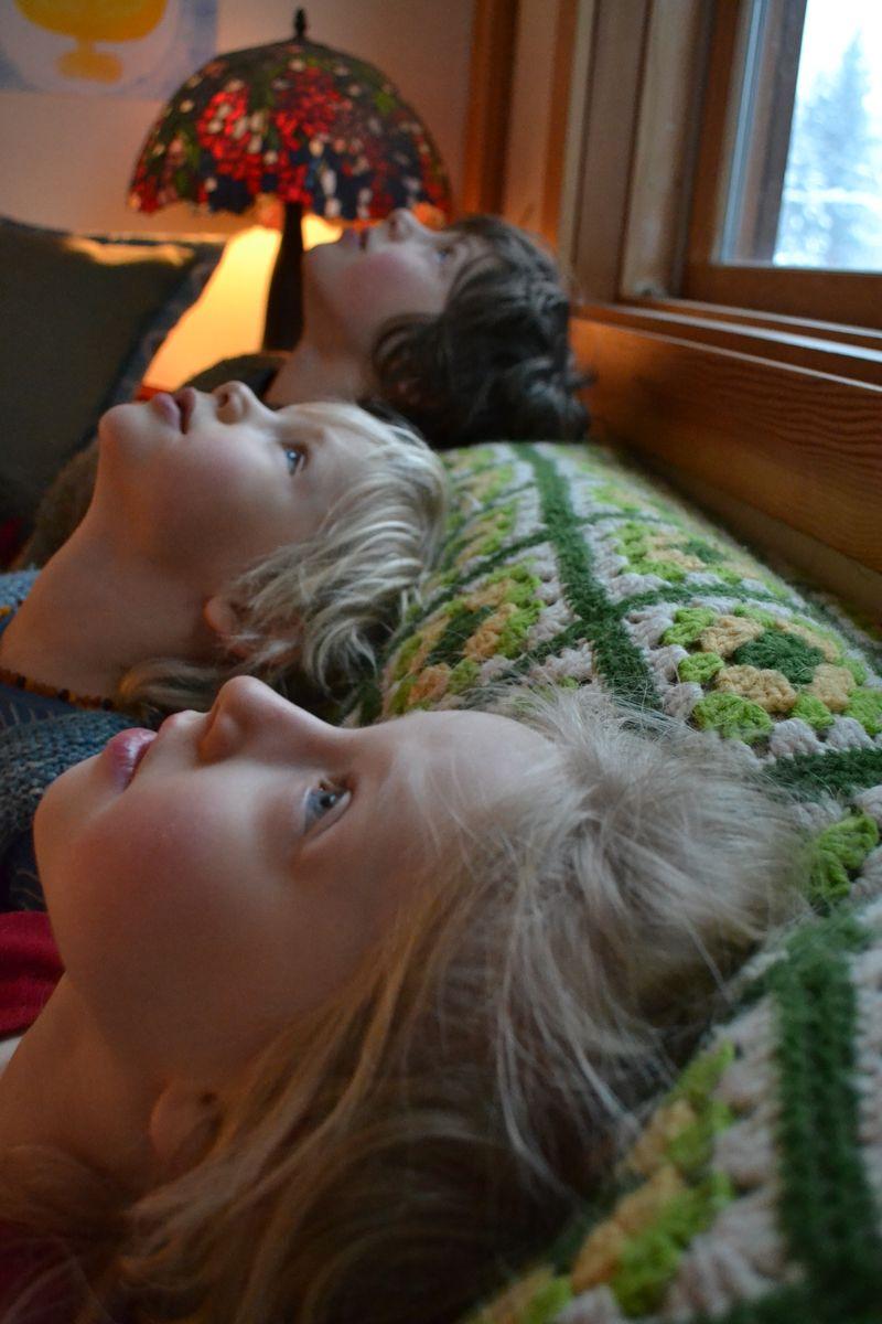 January 2015 - watching flakes fall