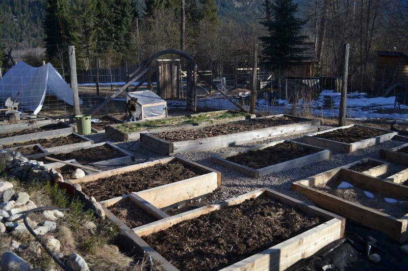 March 2015 - big garden