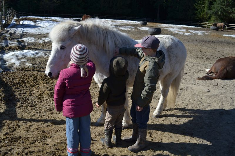 March 2015 - first riding lesson