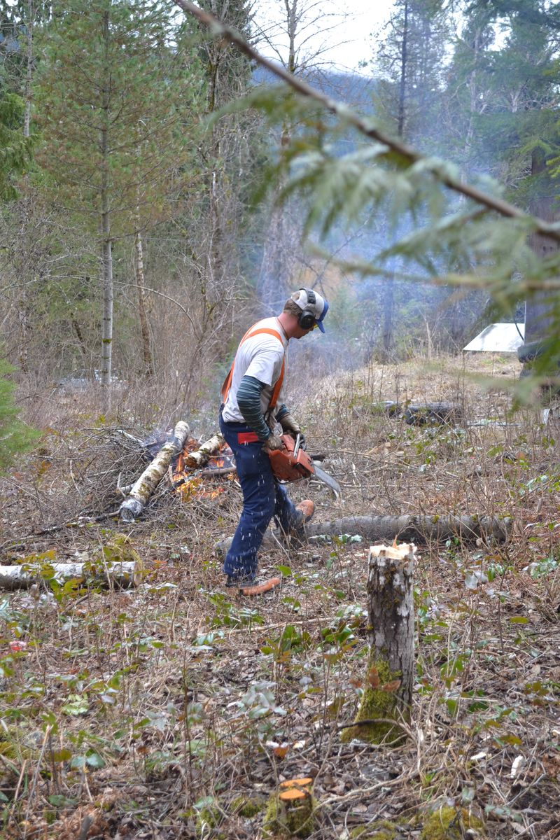 March 2015 - clearing goat pasture 7