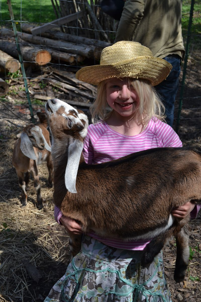 May 2015 - Heidi arrives 1