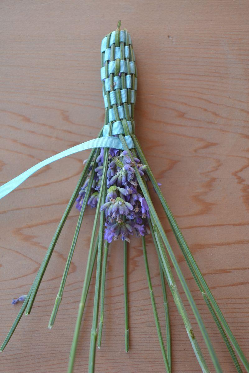 July 2015 - lavender 6