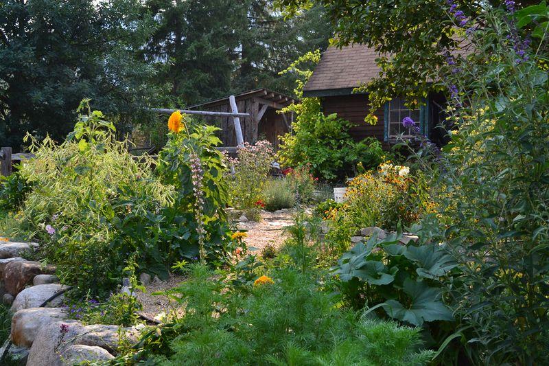 August 13, 2015 - kitchen garden