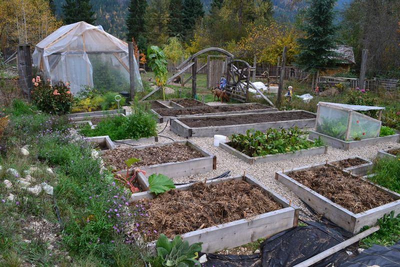 October 15, 2015 - big garden