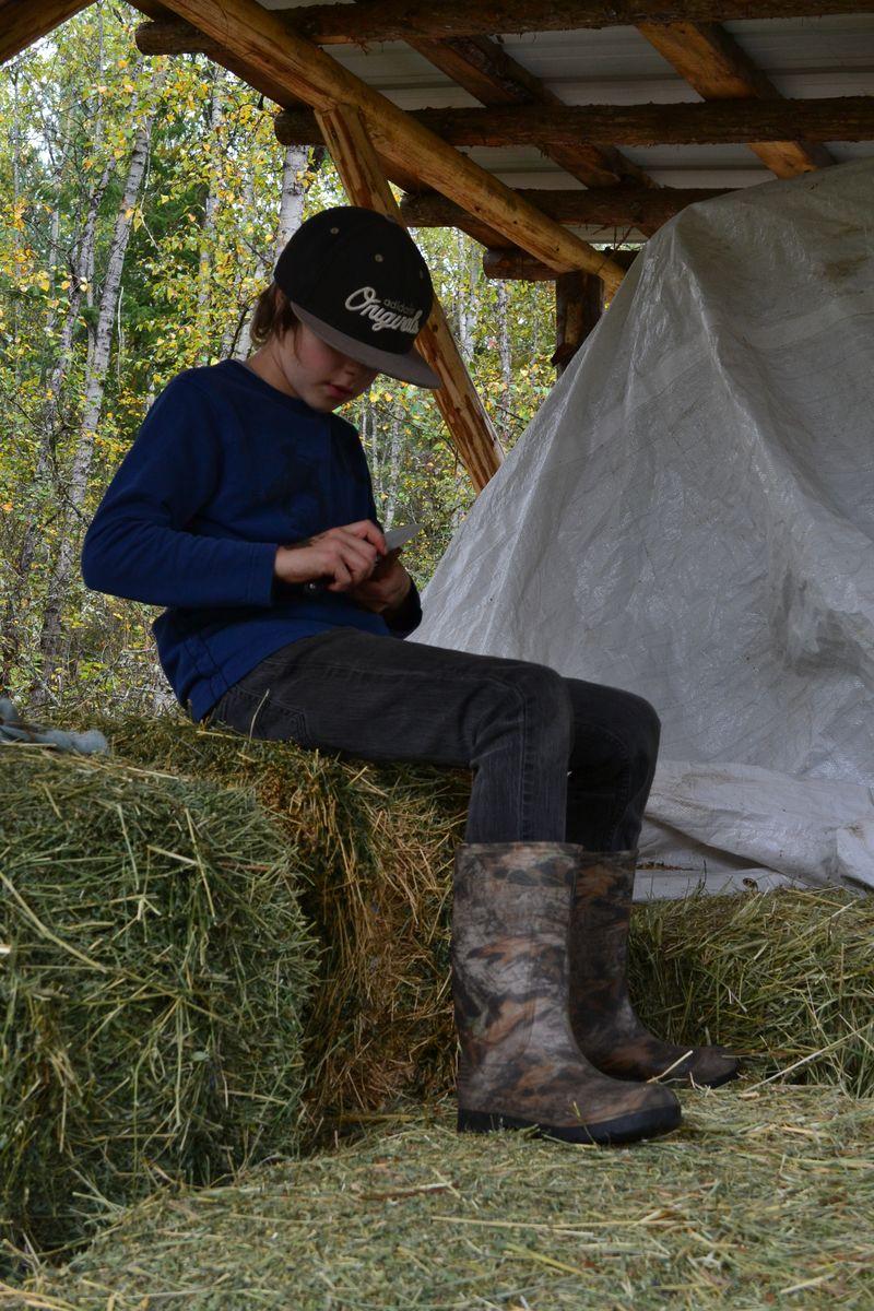 September 2015 - hay shed 2