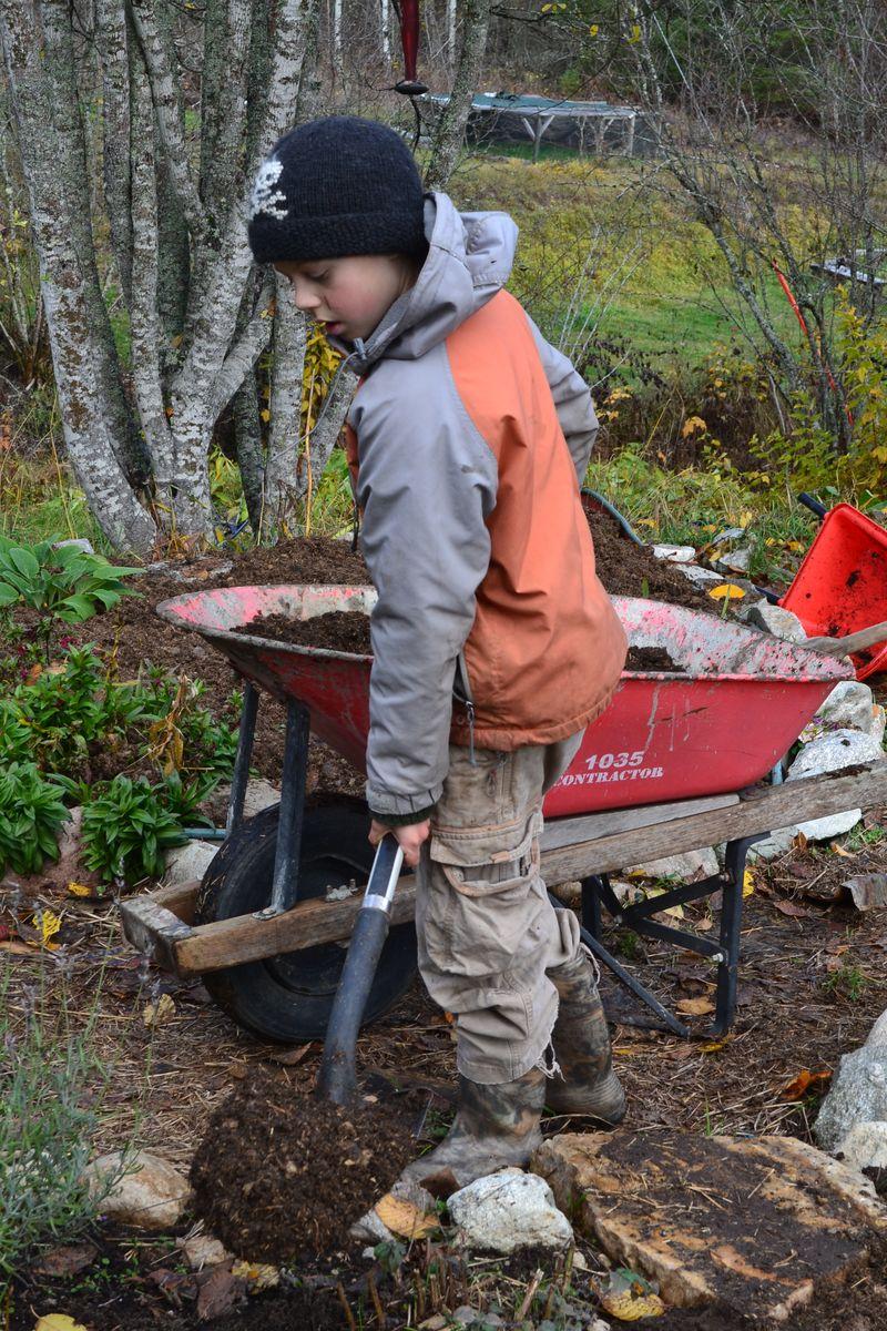 November 2015 - yard work 6