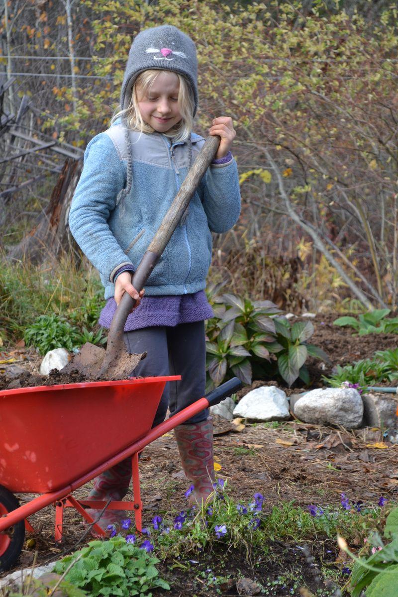 November 2015 - yard work 11