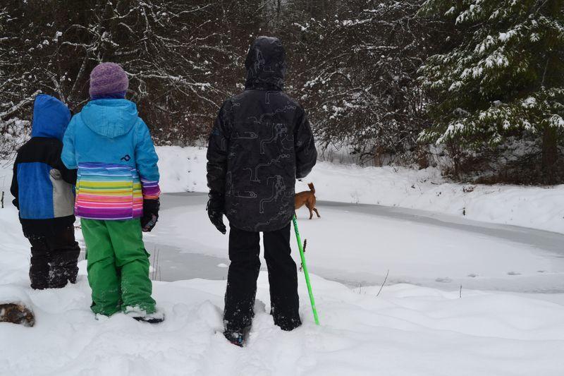 December 2015 - snow love 3
