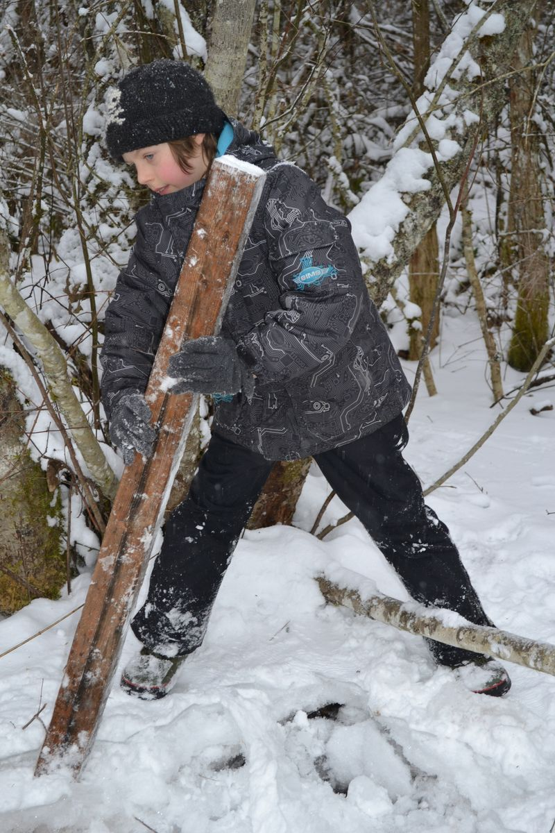 January 2015 - snowing 7