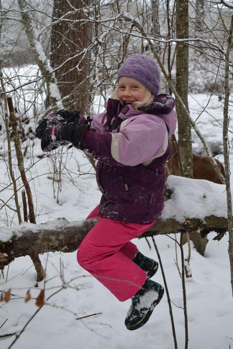 January 2015 - snowing 11