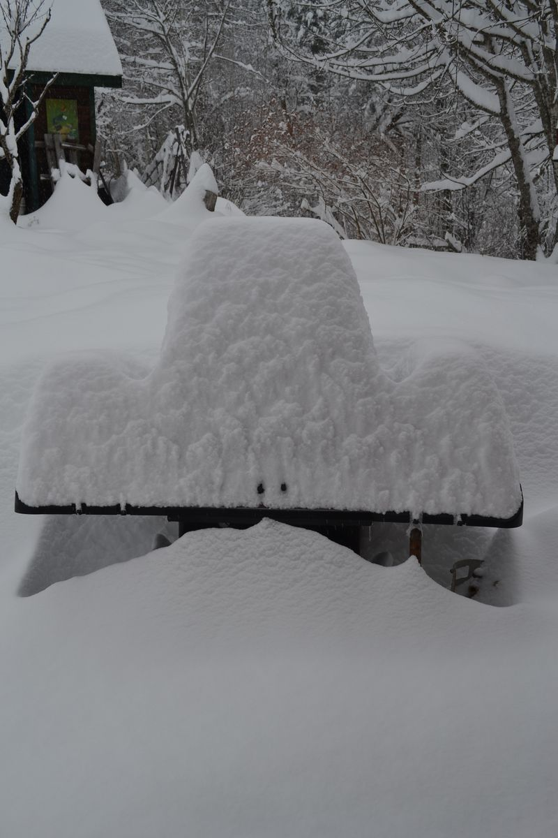 January 2015 - snowstorm 3