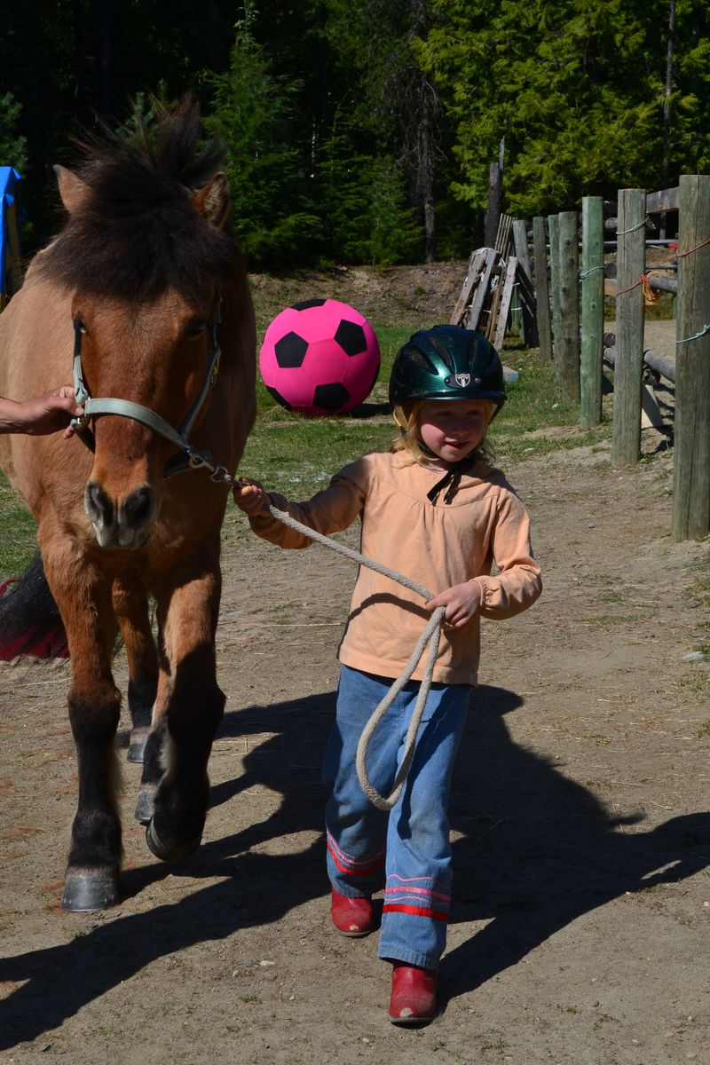 April 2015 - first day at horse lessons 2