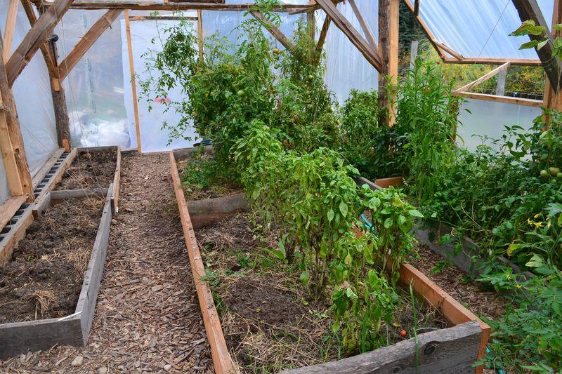 October 15, 2015 - greenhouse
