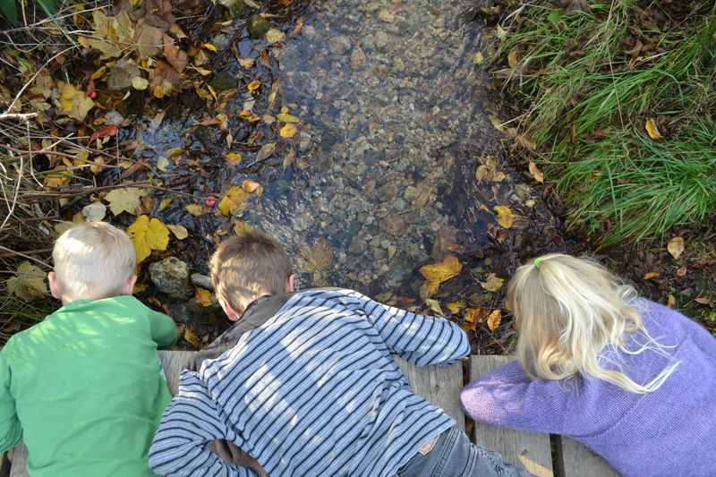 October 2015 - creekside 1