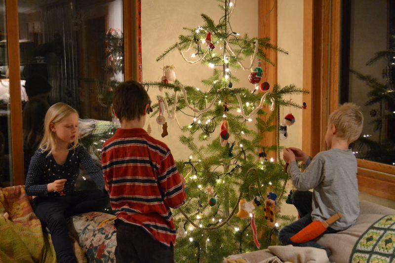 December 2015 - tree 11