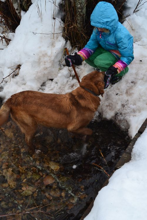January 2016 - girl and her dog